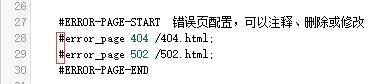宝塔nginx自带404配置规则修改